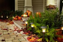 Fall & Halloween decorations  / by Tina Church