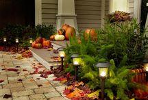 Fall & Halloween decorations  / by Tina Church