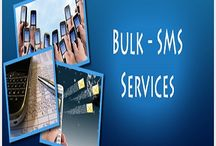 Bulk Text Messaging- The World at Your Fingertips