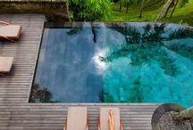 pool in the garden / pool in the garden