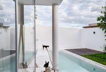 Perritos arquitectos