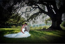 Wedding Memories / Set in the beautiful valley the Bates farm is a beautiful setting to start creating a life together.
