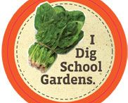 School ~ Going Green / School: gardens, recycling, earth day, Terracycle, education