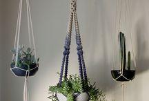 Macrame Plant Hanging