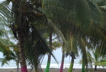Travel - Costa Rica, Puerto Limon