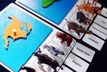 Montessori Geografica