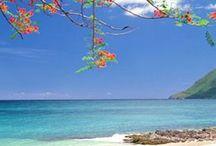 La Martinique avec Régionelles.com / Artisanat, Gastronomie & Tourisme