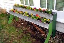 Garden Ideas / by Kirsten Hammer Equine Artist