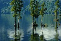 Moana / Moana and Lake Brunner. West Coast. South Island. New Zealand.