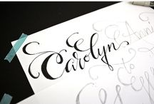 Typography / by Viridiana Flores