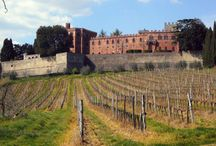 Winery & Vineyards for Sale