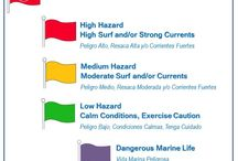 At the Beach / At the beach safety tips, rip currents, to swimming near a lifeguard.