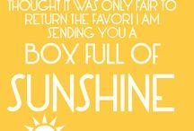Sunshine Box