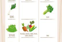 Vegetable Garden Planting Companion