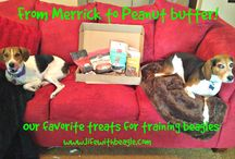Favorite pet treats for beagles / by Life With Beagle