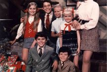 Brady Bunch / Television