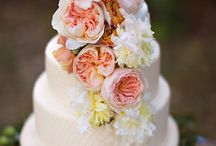 Wedding Cakes / If I was a wedding cake artist, this would be my portfolio / by Nora Mohammad