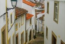 Sardinas Lisboa / by Odil Torrent // fraskilandia