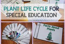 Special Ed - Life Skills