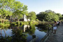 Eau fermée / Lac et étang