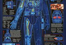 Star Wars Characters Info