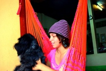 Hammocks for Home / Here you can find a great selection of hammocks for your home. Don't like the colors we have, email us, we make our hammocks to order. / by Pedro Almanza