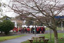 Kapa Haka Exchange / Maori Kapa Haka Exchange between Glenbrook School and Puni School