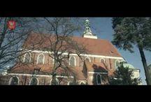 Oleśnica / Historia i współczesność, miejsca, które warto zobaczyć; informacje