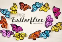 Paper crafts / Paper