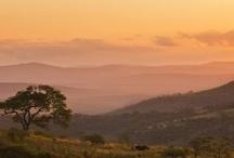 Africa-Safari Lands / by Saskia Bruinders