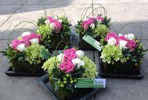 series florales