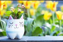 pot de fleur chat