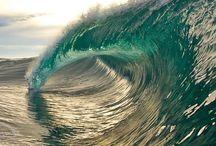 oceans / by Joann Corsin Liszewski