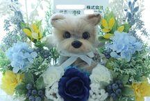 お祝い花「うちの子トピアリー(R)」