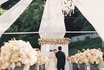 Weddings, joy, princess / by Census Lo-liyong