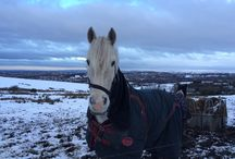 GoSky Rides 2015 / Images from the Saddleworth Clarion GoSky Rides