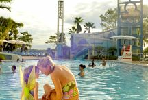 Disney Vacation / by Benita Matthews