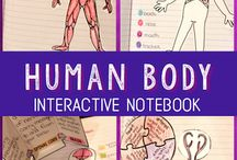vücudumuz