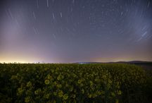 Lale tarlaları geceleri ışık saçıyor / Konya'nın Karatay ilçesi İsmil Mahallesi'nde bulunan lale tarlası gece yıldızlarla birlikte görsel şölen oluşturdu.