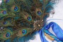 Pávatoll - Peacock feather