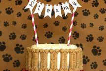 pasteles para perros