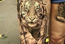 Tigre (photo)