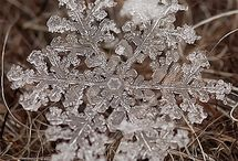 Natures Jewels / Real Snowflakes