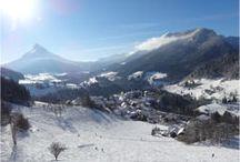Montagne - Ski fond ou piste - Randos-  Fleurs de soleil . / Skis , randos ,