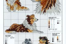 Shetland Sheepdog pattern
