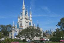 Disney World / by Lucile Teeter