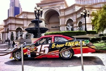 CLINT BOWYER, Racing pictures, and more stuff / by Marsha Persinger