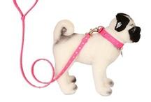 Designer's chic pugs