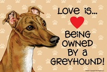 Greyhound Goodies / by T C