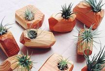 # decor / plants
